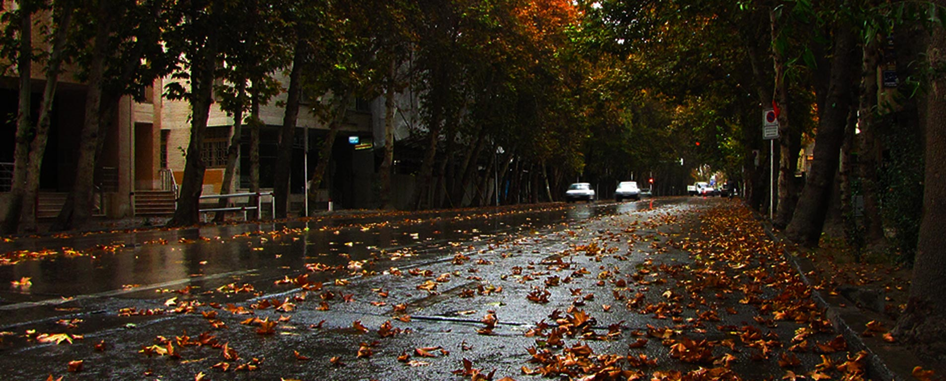 خیابان تهران -ولیعصر
