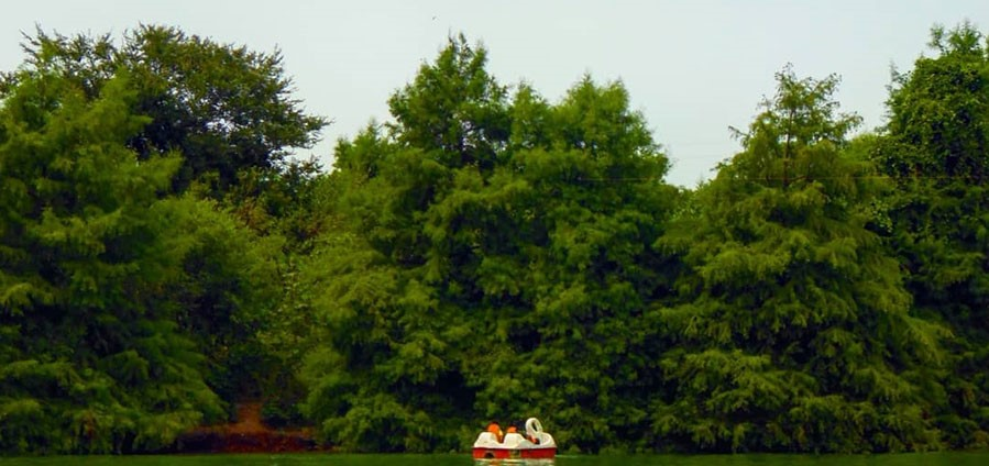 دریاچه آویدر