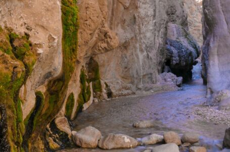 چشمه مرتضی علی ، طبس