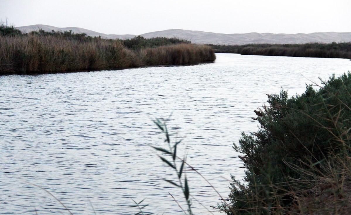 تالاب گاوخونی ، رودخانه زاینده رود، اصفهان