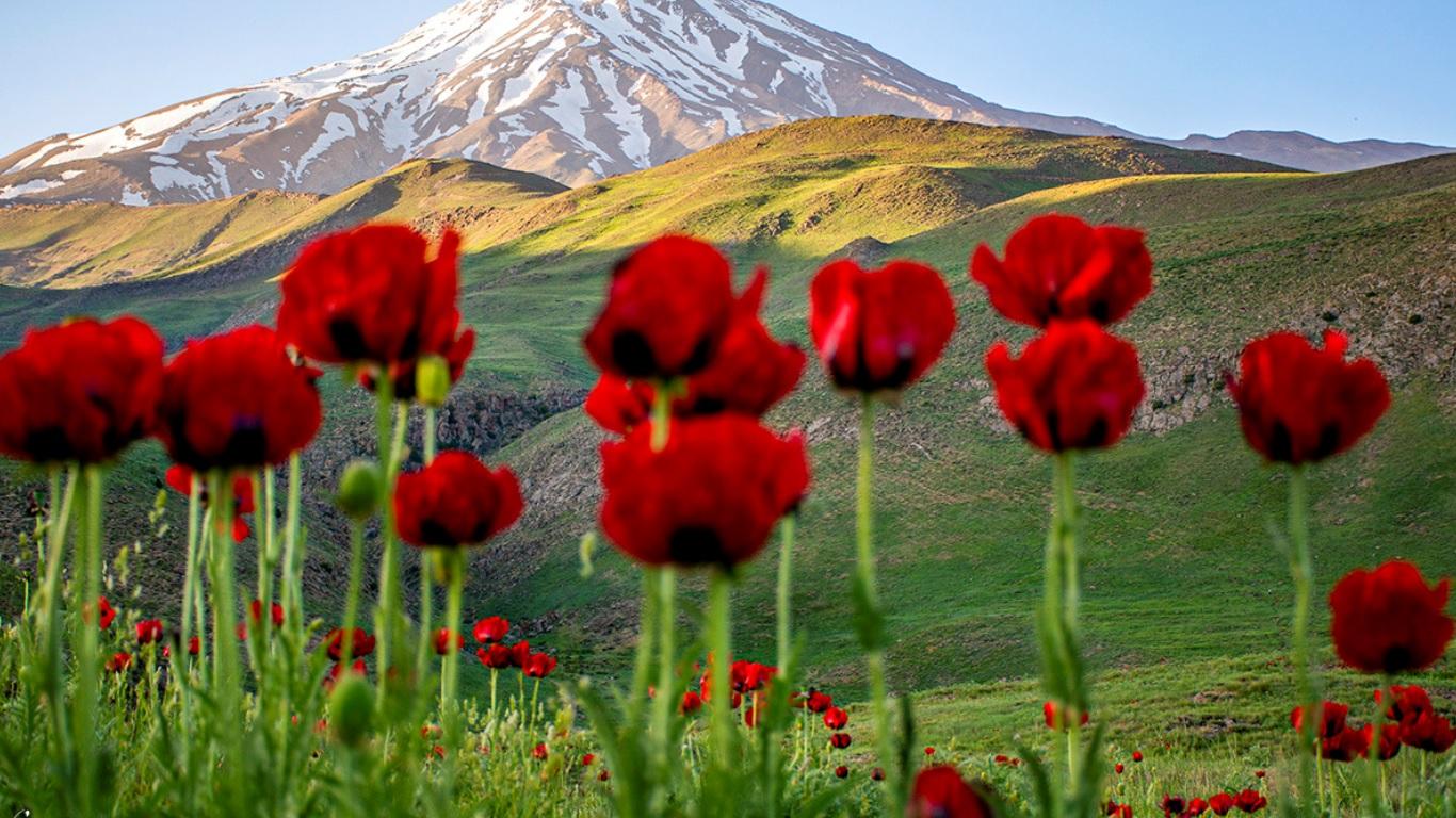 دشت لار آمل ،مازندران