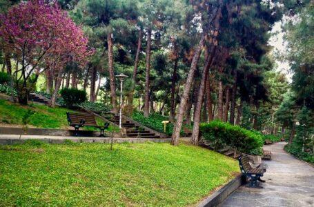دیدنی های پارک جنگلی شیان تهران