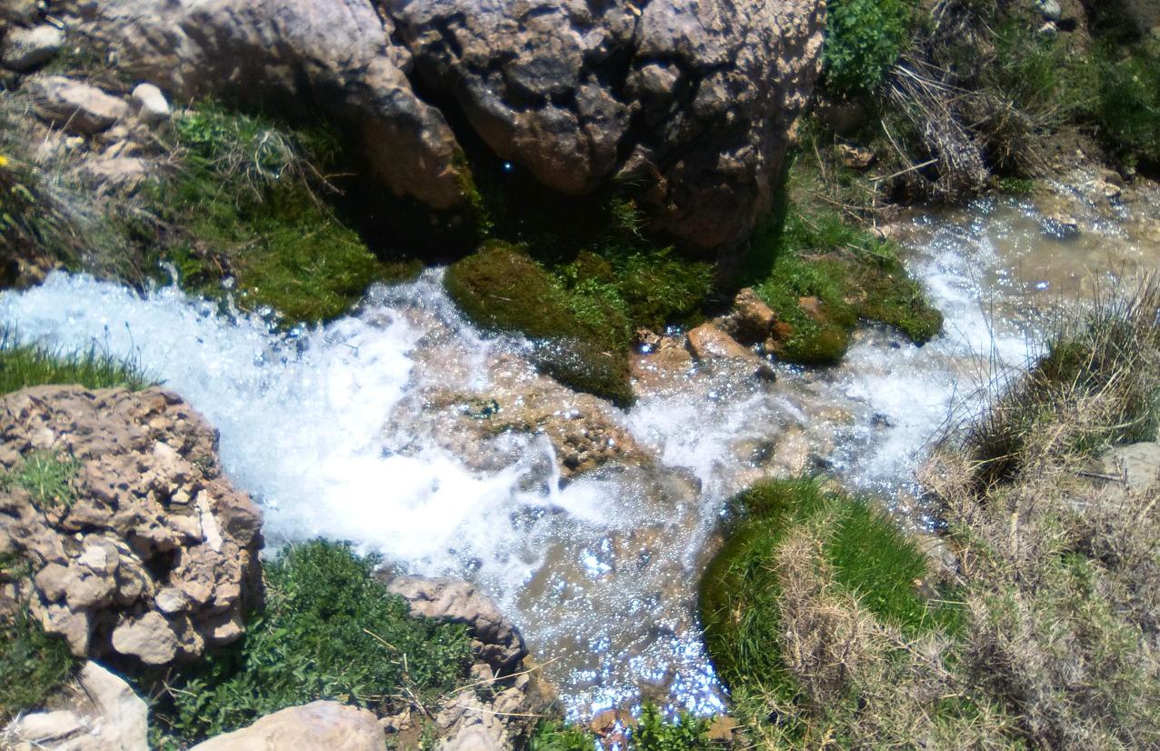پارک جنگلی پَروَز لردگان
