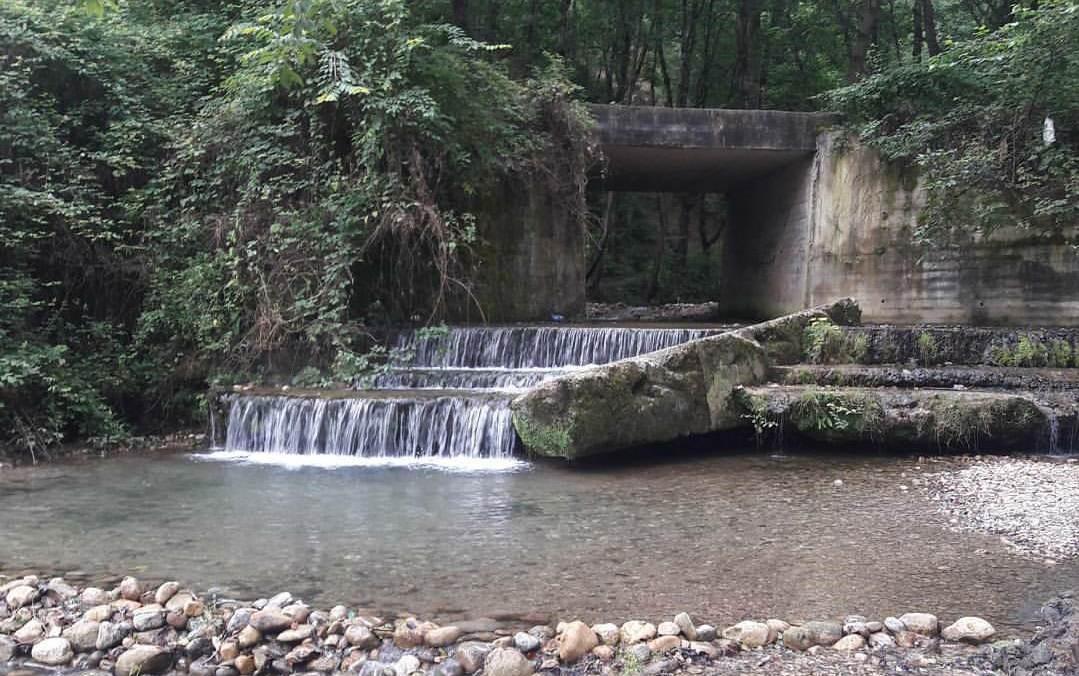جاذبه گردشگری پارک جنگلی کپشل ، مازندران