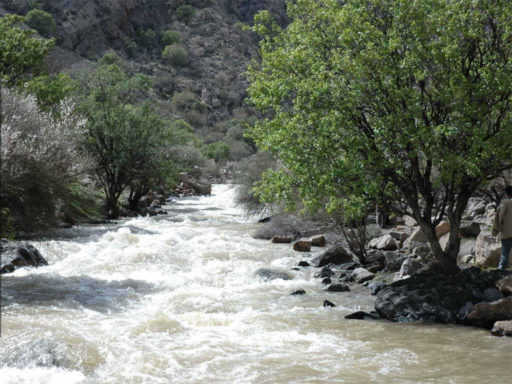 جاذبه گردشگری پارک ملی بختگان شیراز 1