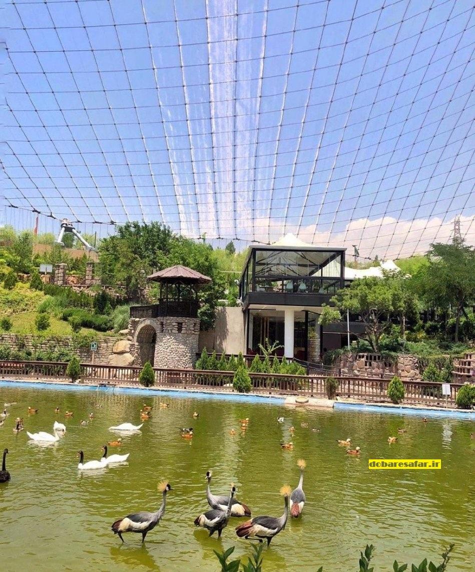 باغ پرندگان، شیان