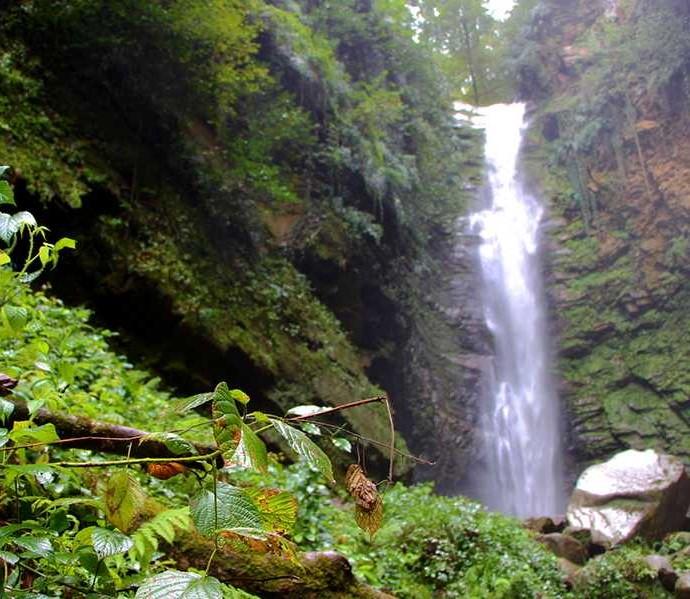 پوشش گیاهی آبشاراسکلیم