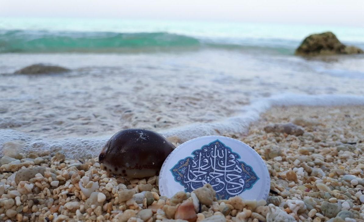 جاذبه های گردشگری و دیدنی بوشهر