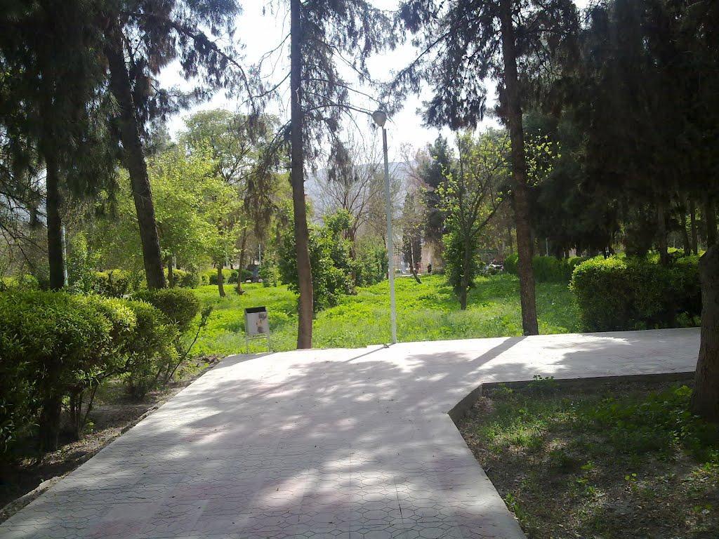 باغ نظر كازرون