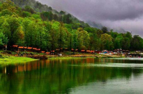 جنگل سی سنگان | استان مازندران