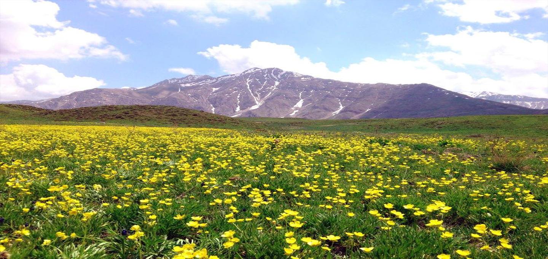 پارک ملی لار | دشت لار