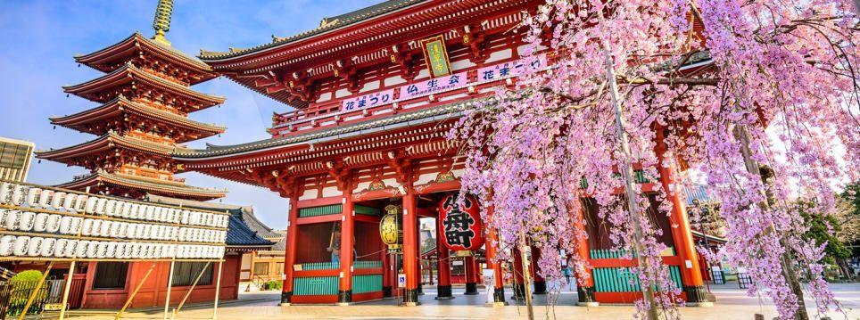 معبد سنسوجی (Senso-ji Temple)