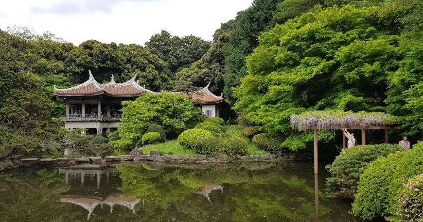 پارک ملی شینجوکو گیوئن (Shinjuku Gyoen)