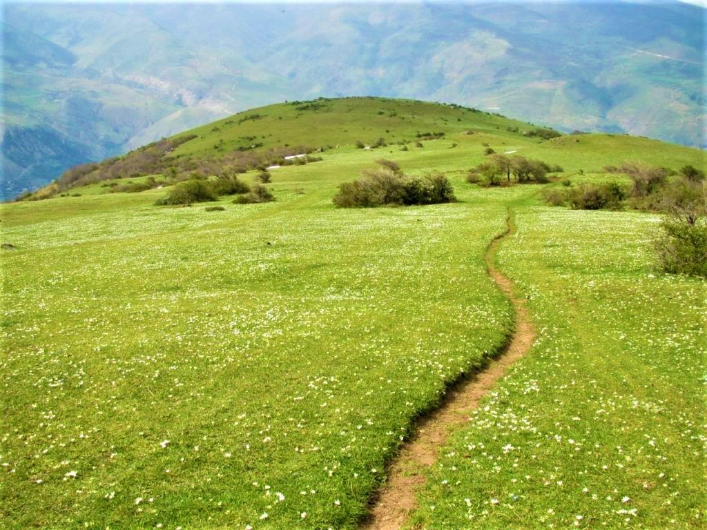 روستای گلدیان رودبار