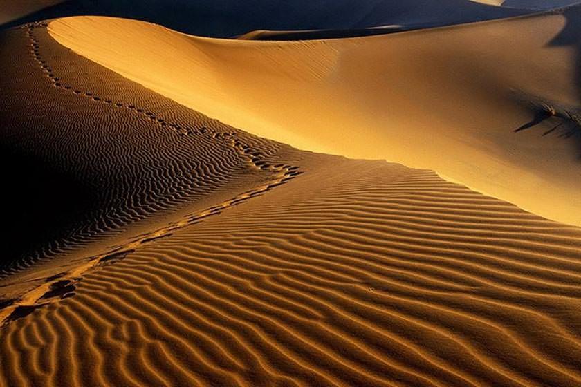 کویر مصر | روستای مصر