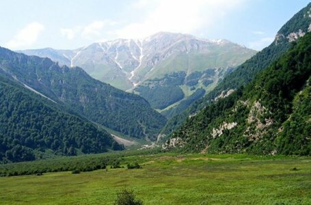جنگل سه هزار تنکابن ، مازندران